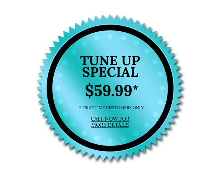 Tune up special